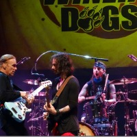 THE WINERY DOGS RICHIE KOTZEN BILLY SHEEHAN MIKE PORTNOY SABAN THEATRE 6/27/2014