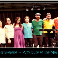 Breathe: A Tribute to the Music of Pink Floyd Cotuit Center for the Arts. Barnstable Cape Cod, MA 3/27 - 3/28/2015